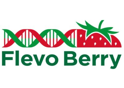Flevo Berry: Brandguide en Communicatiestrategie